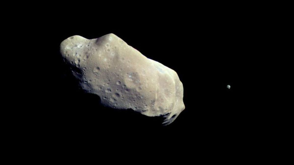 Asteroids Ida (left) and Dactyl