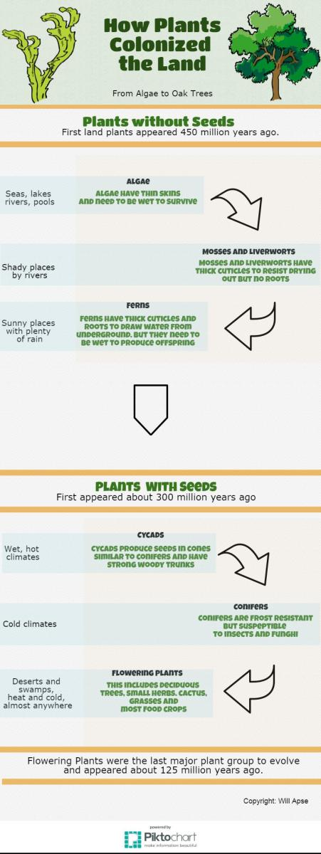 Plant types and evolution.
