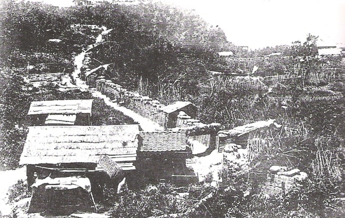 The Imperial Army surrounded the samurai and built many fortifications designed to keep them from escaping.
