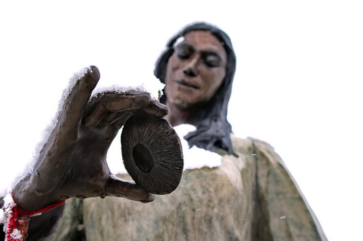 Sacajawea of the Shoshonis