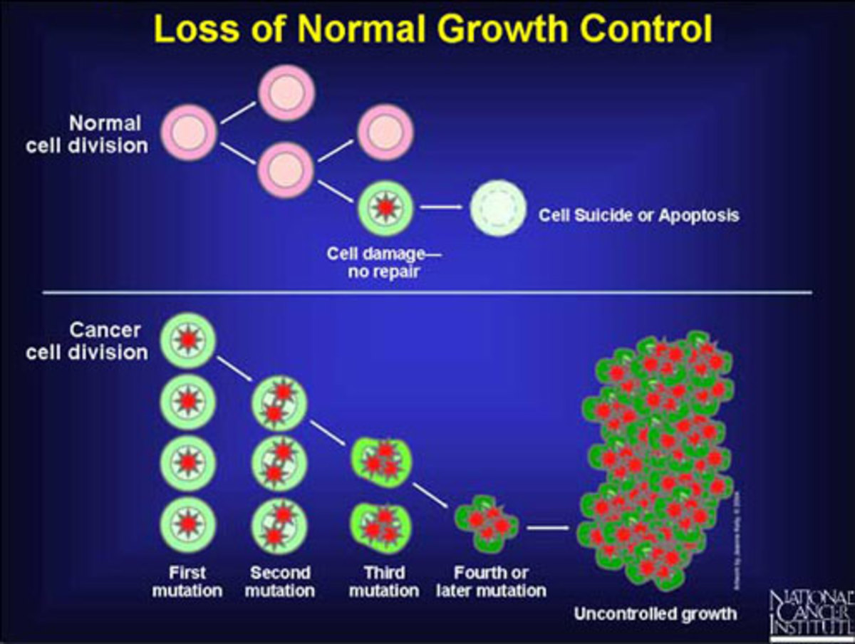 Cancer is caused by cells escaping, via one means or another, the growth control mechanisms in the body. It does take time to develop, which is why early diagnosis is vital to survival.