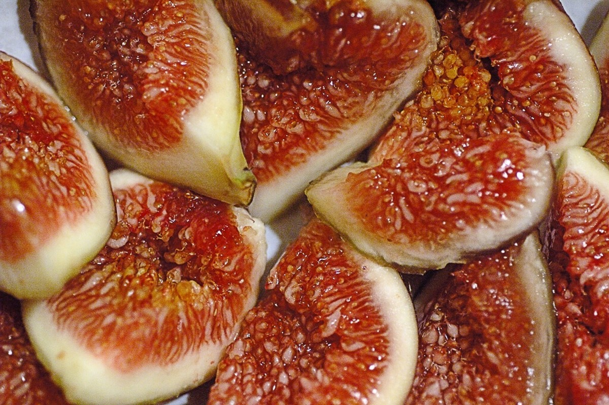 Figs can be a nutritious fruit for wild birds.