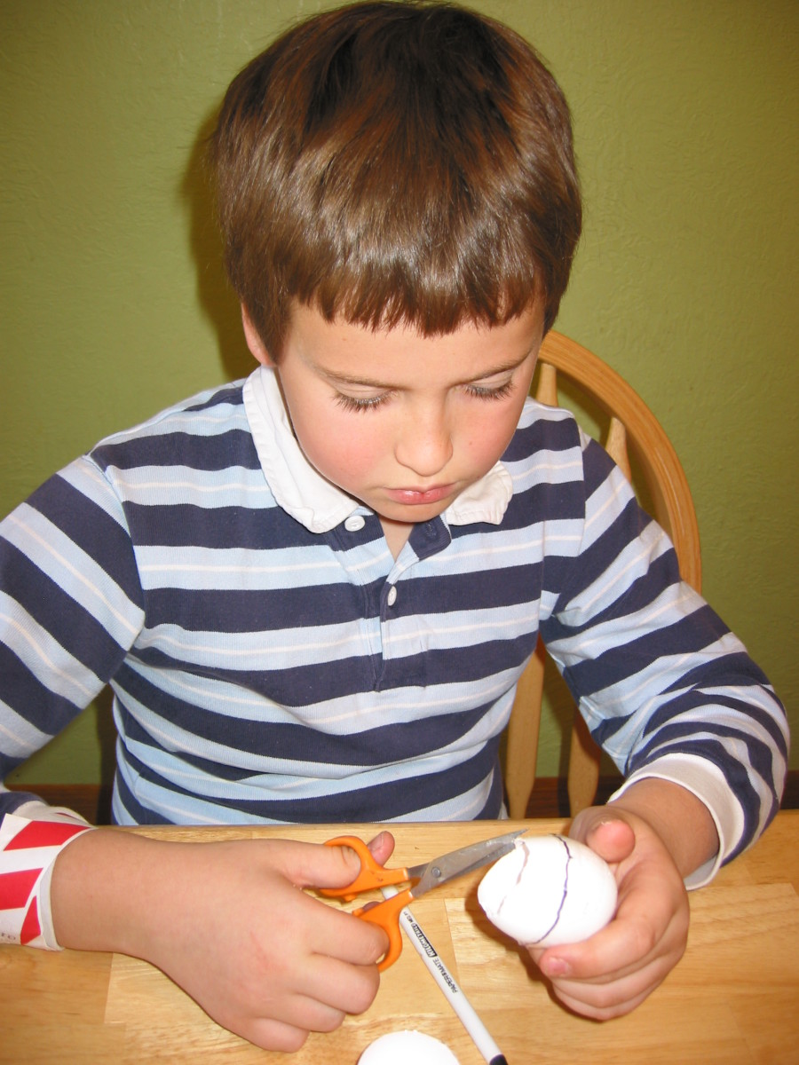 1. Cut eggshells.