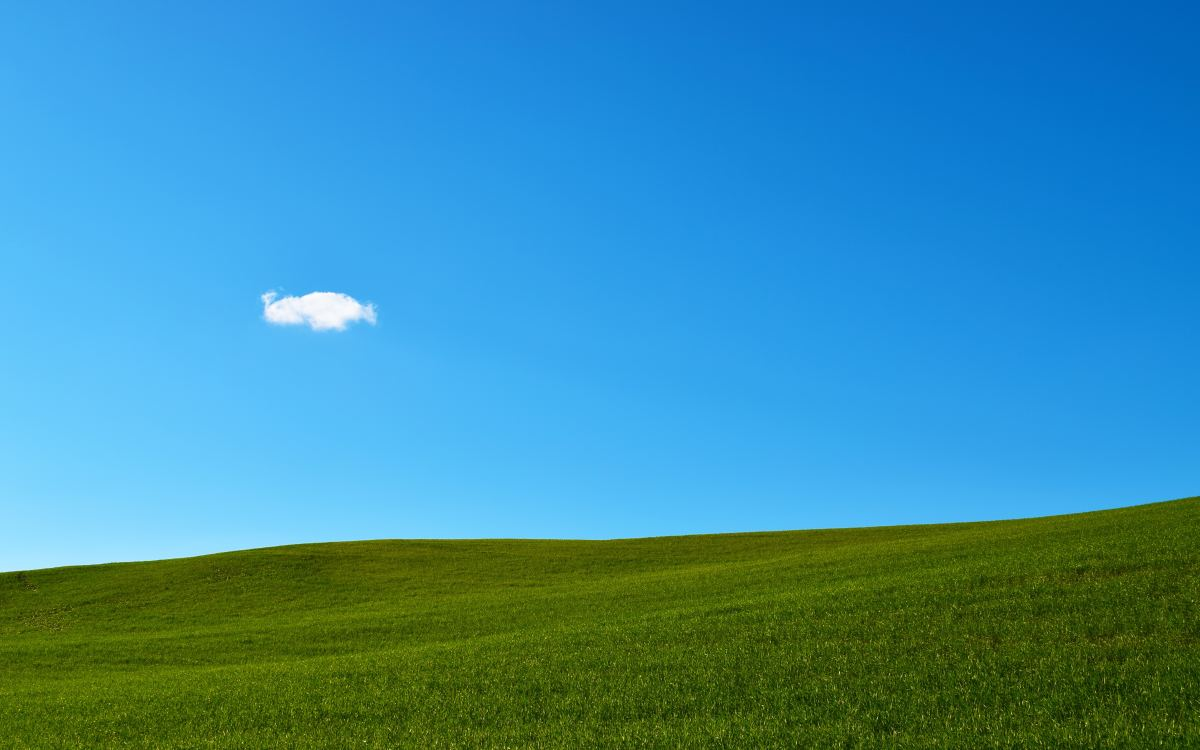 Blue sky over a green hillside.