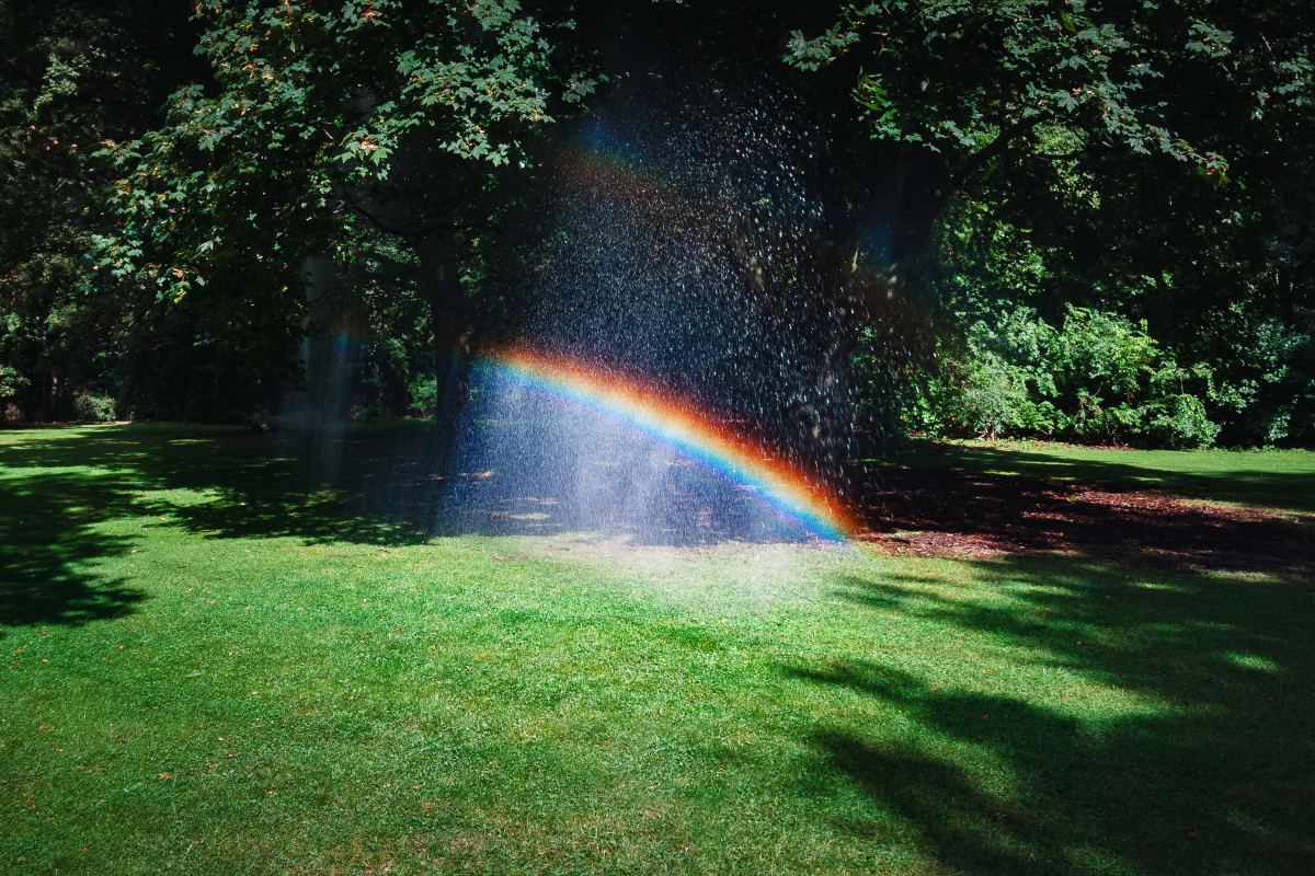 Rainbows consist of the seven colours of the visible spectrum.