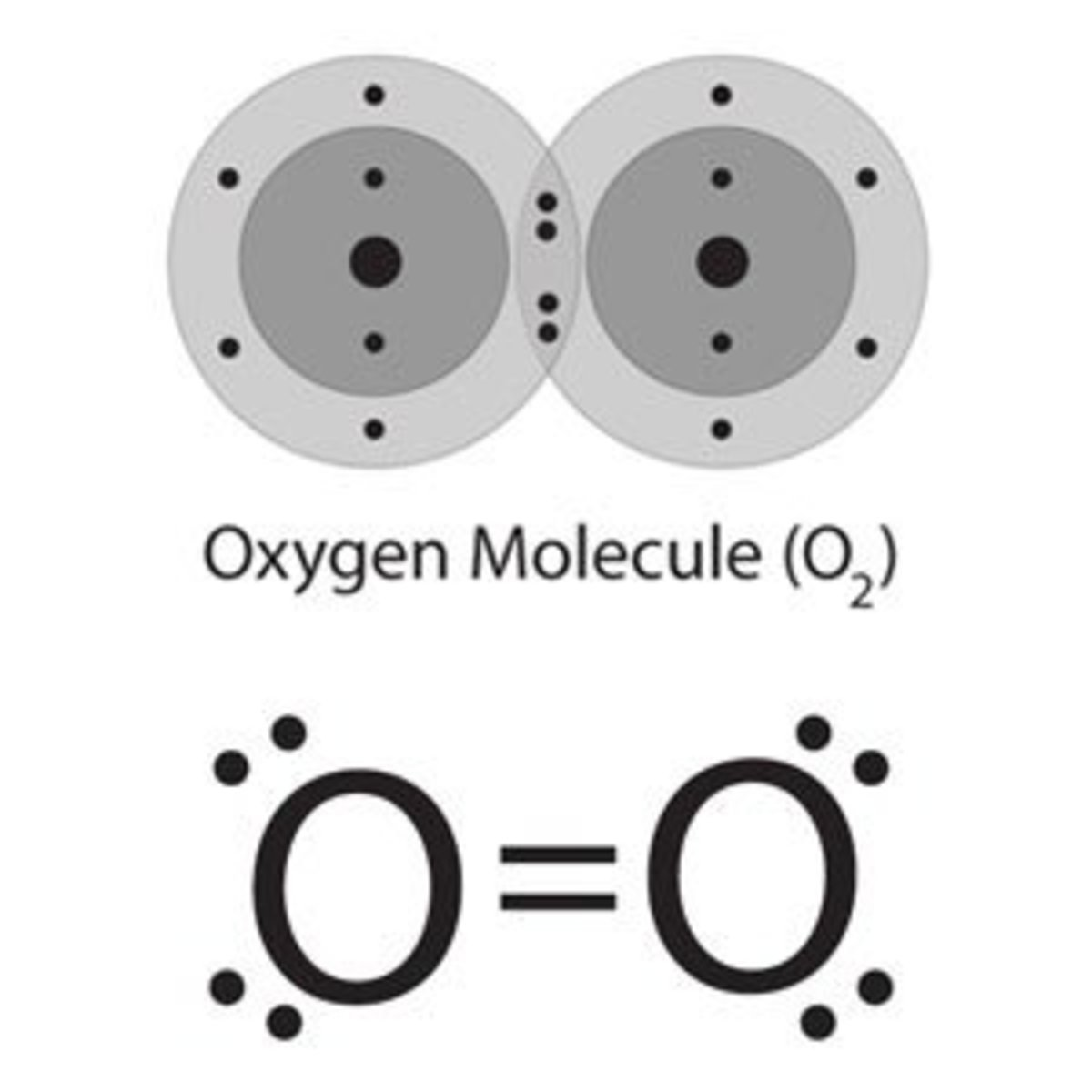Covalent bonding in Oxygen molecule
