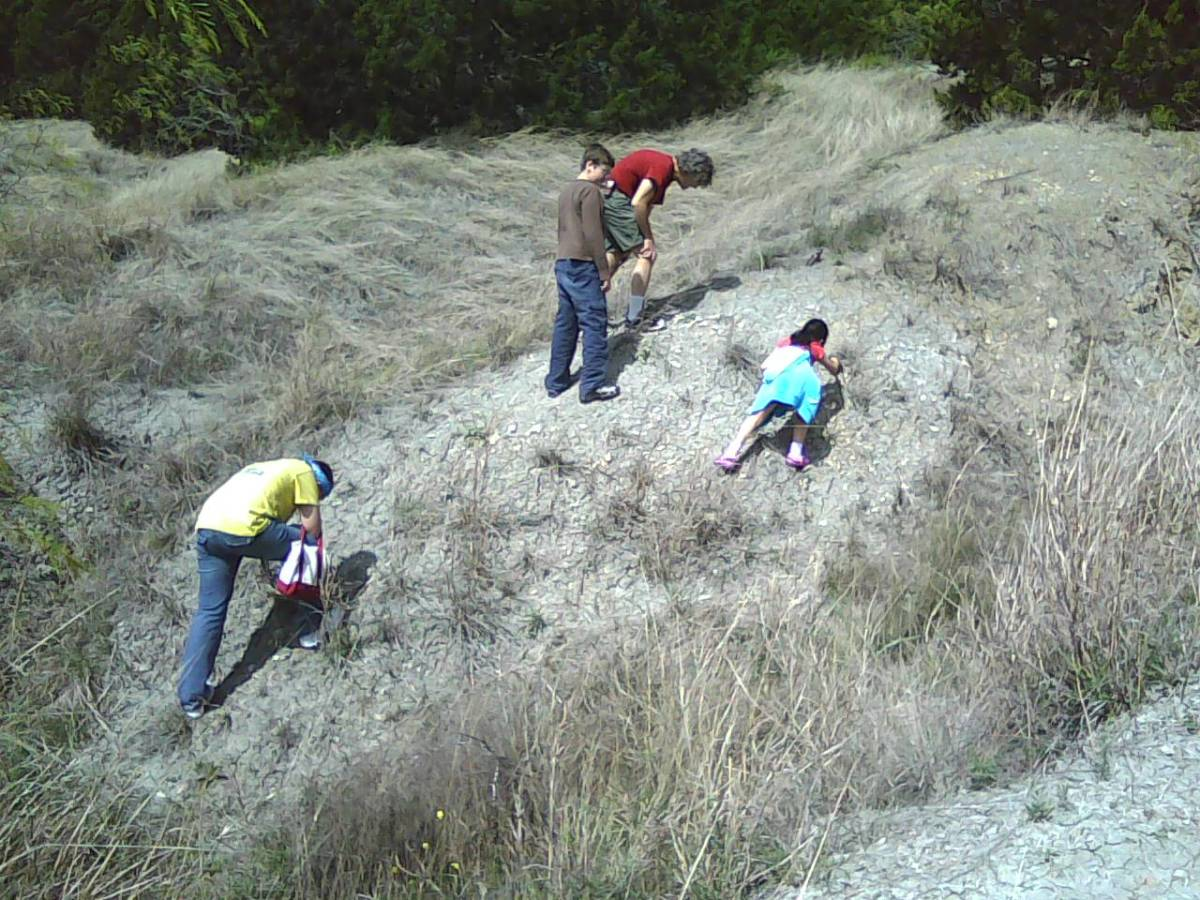 fossil hunting hill
