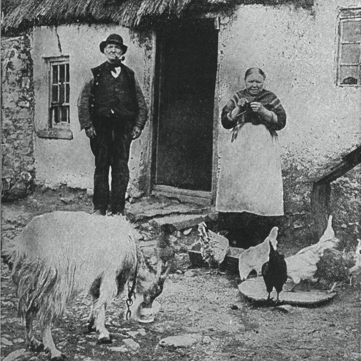 The Irish struggle has been a long one.