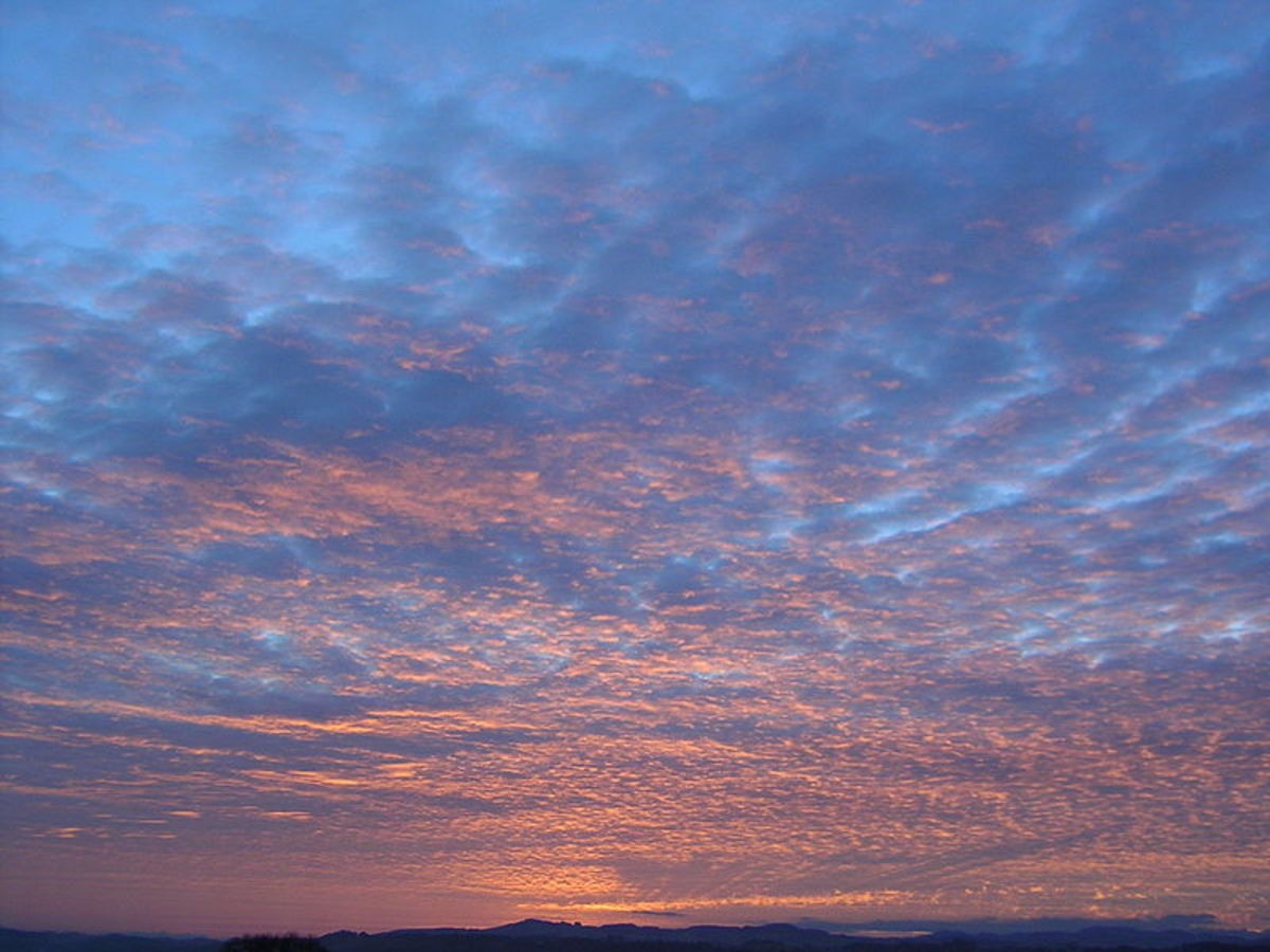 The setting sun reflecting off altocumulus clouds