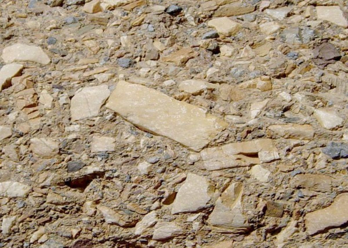 The gravel in Breccia has a much more angular shape than in conglomerate.