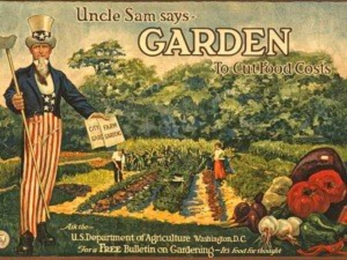 This poster was distributed by the National War Garden Commission to publicize their free bulletin on how to grow a garden.