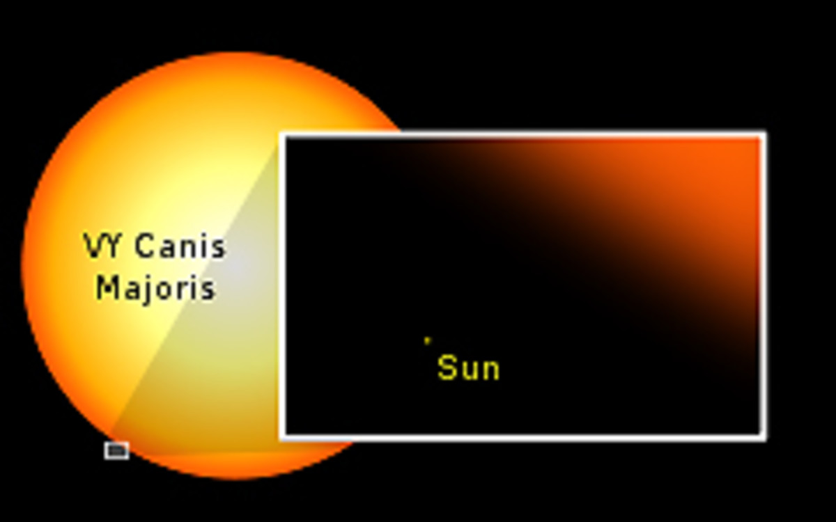 VY Canis Major compared to our Sun. There is some dispute over the size of VY Canis Major. Some astronomers believe it to be 'only' as big as Betelgeuse. But the majority view seems to be that it is the largest star of all in our part of the Galaxy