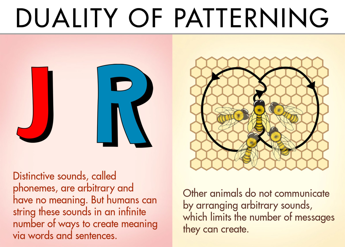 Duality of patterning: Distinctive sounds, called phonemes, are arbitrary and have no meaning. But humans can string these sounds in an infinite number of ways to create meaning via words and sentences.