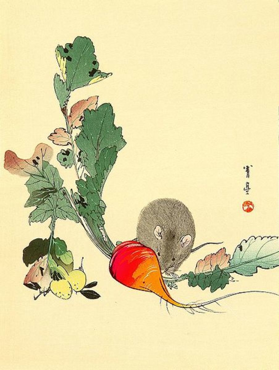 Mouse and radish