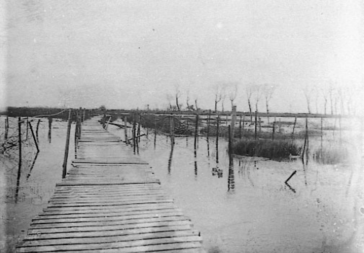 WW1: Flooded area near the Yser, 1916.
