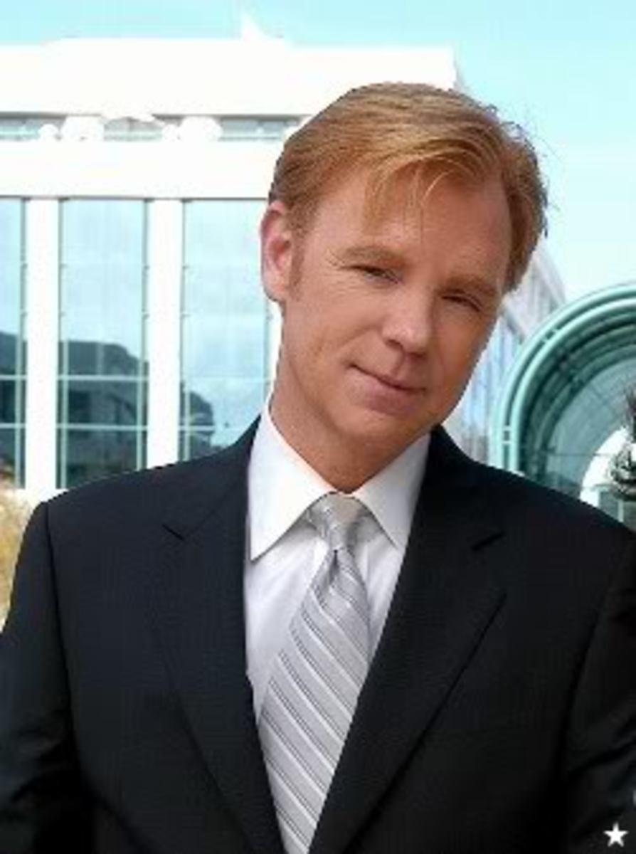 David Caruso:  Star of CSI Miami
