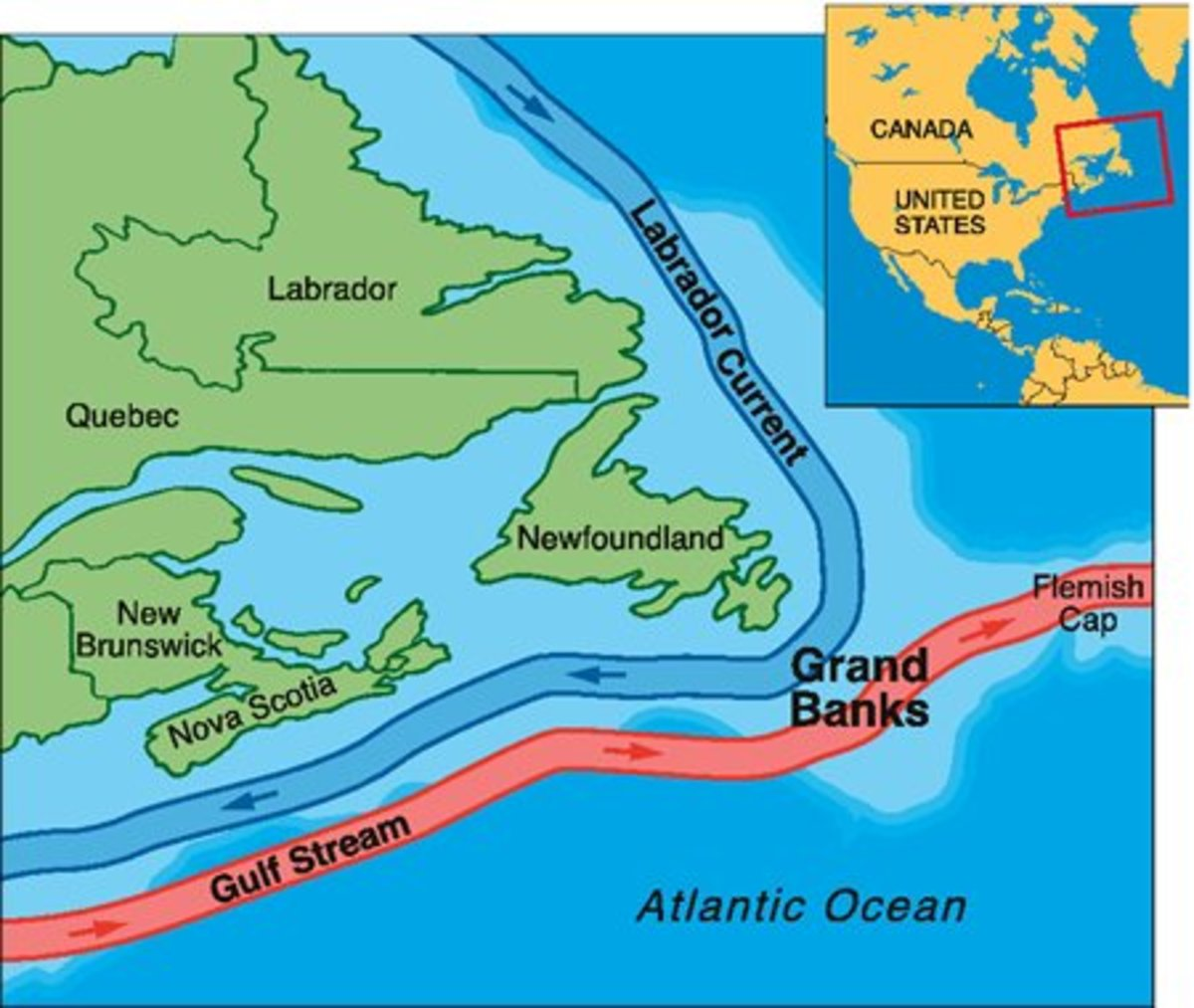 where all the ocean currents meet browns