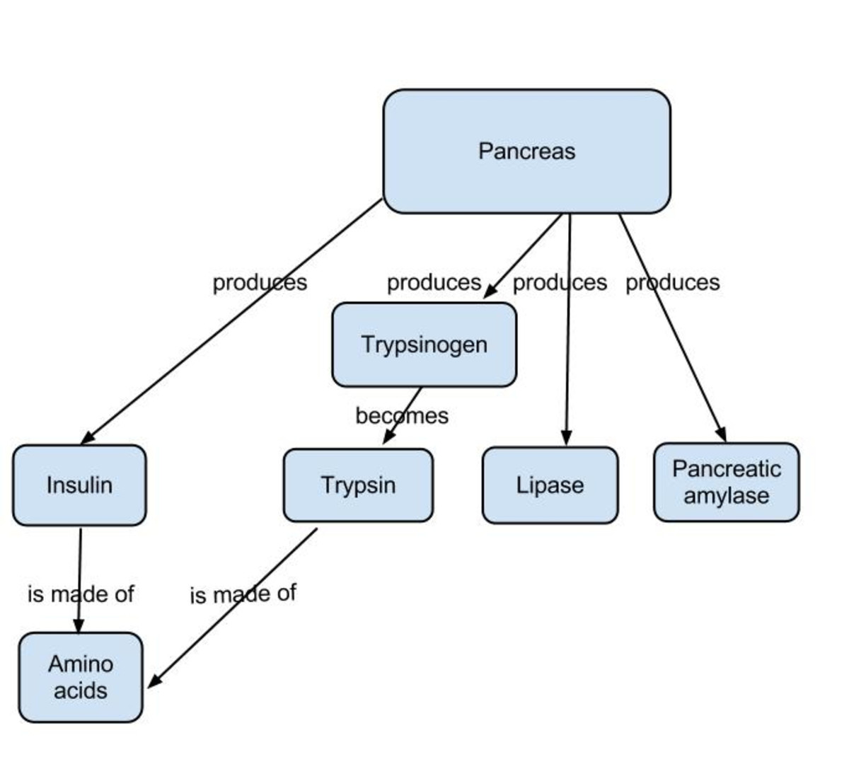 A section of a concept map