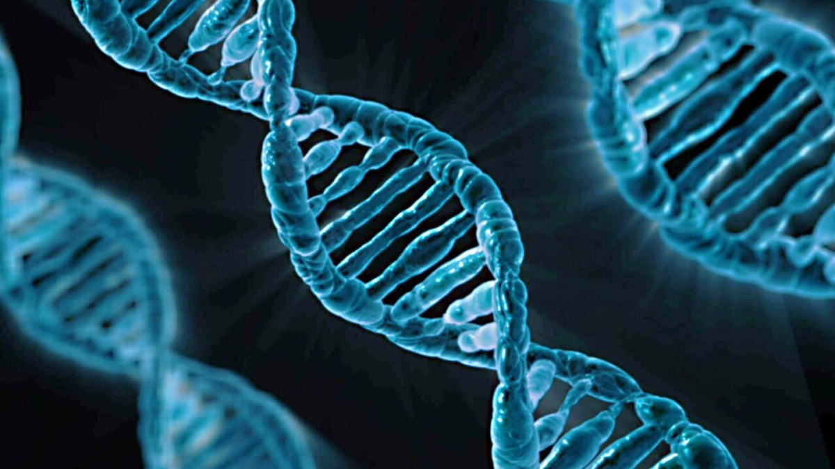 DNA, or deoxyribonucleic acid - the molecule of life that all biology students study