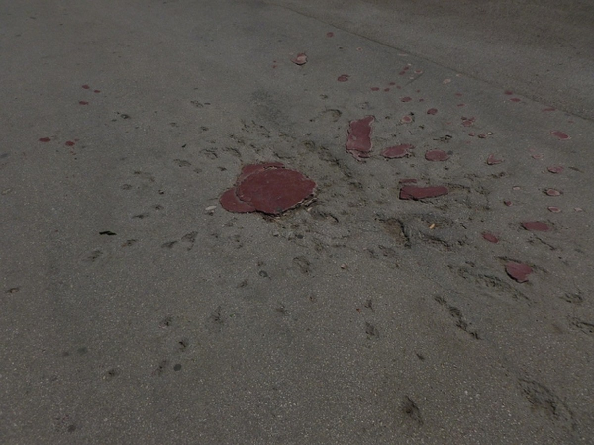 A Sarajevo Rose (mortar shell marks filled with red resin) mark where fellow citizens had fallen. Sarajevo Roses are found all over the city.