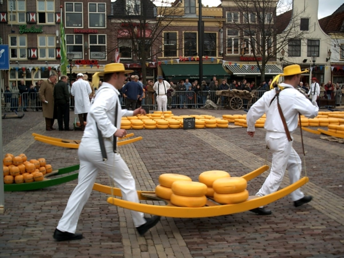 Yellow cheese carriers, Alkmaar