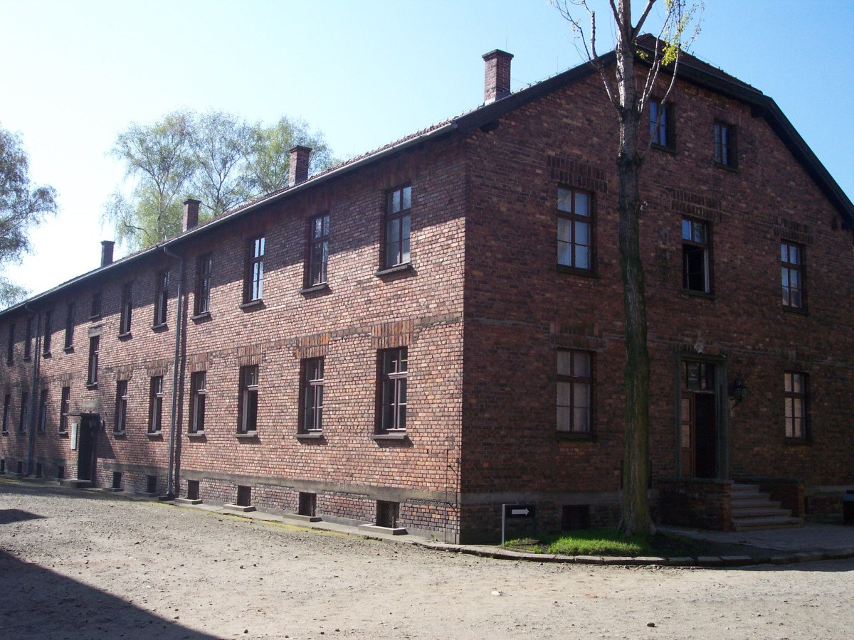 This was considered block 4, the extermination block within Aushwitz.