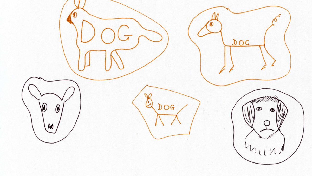 Possible focus for starting a child's mind map about a dog
