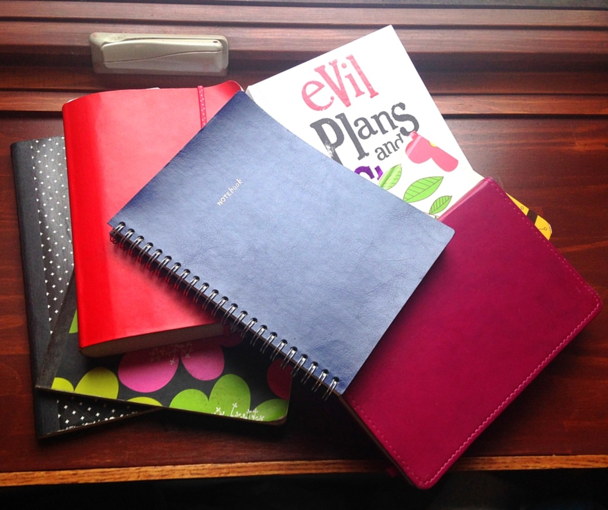 Choosing which notebook to use is the fun part - How to Start A Writer's Notebook