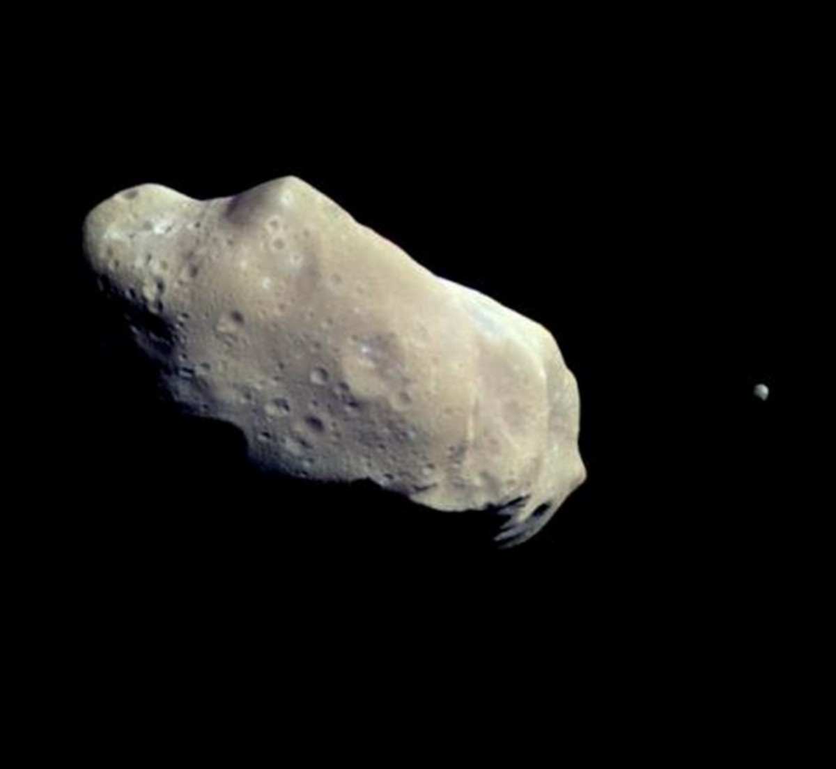 Ida is the large asteroid — 36 x 14 miles — with little egg-shaped Dactyl (dot at right) 1 mile long.
