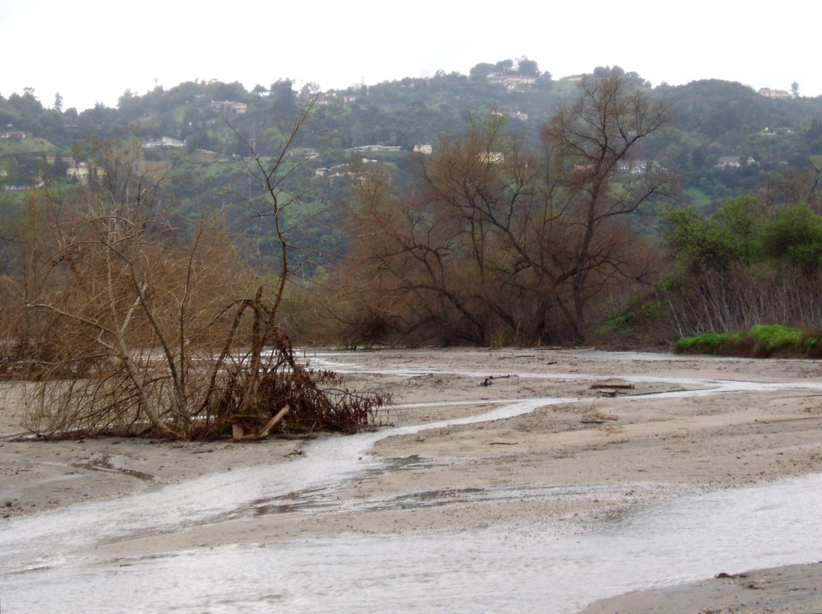 Open Floodplain (Hahamongna Watershed) - The community in the hills beyond is built above the floodplain. This lets the floodplain do its job of absorbing rainwater into the aquifer. Not so the City of Los Angeles, devastated by the flood of 1934.