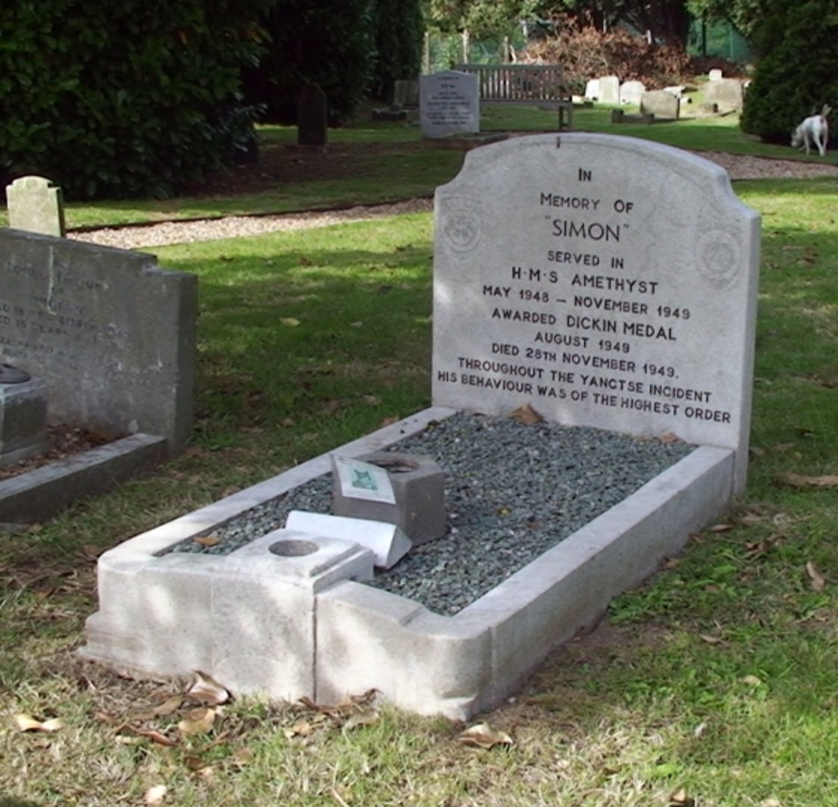 Grave of Able Seacat Simon (1947 - 1949)