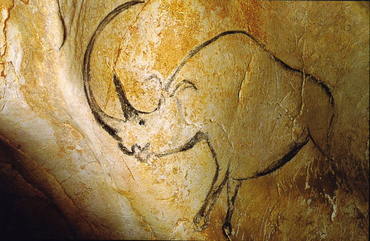 A prehistoric drawing of the woolly rhino from the Chauvet cave, France.