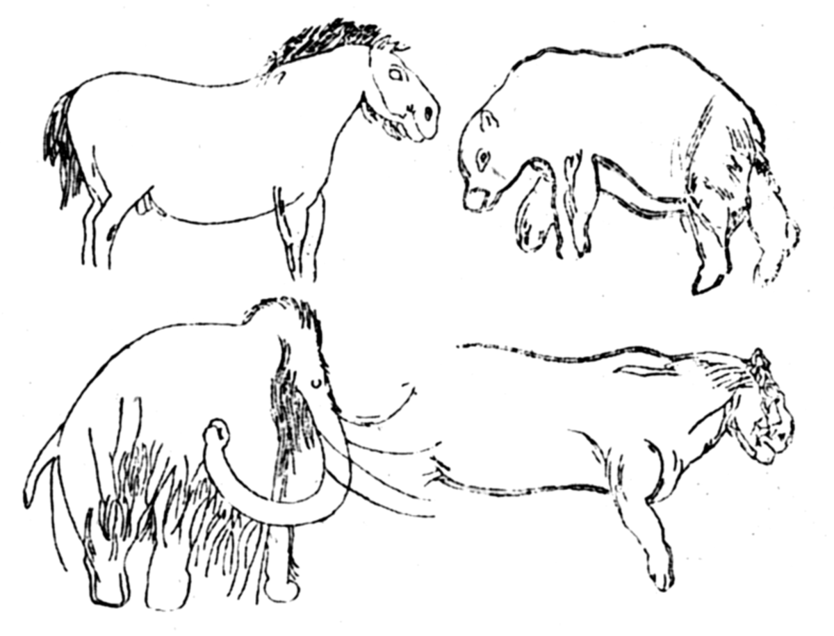 These are wall drawings from the Les Combarelles cave in the Dordogne. The cave bear is the creature in the top right; beneath it is the cave lion.