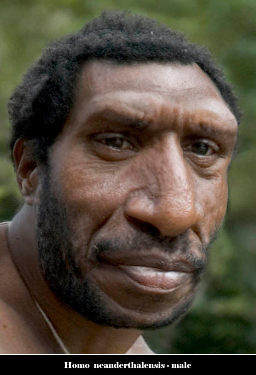 The Neanderthals looked remarkably similar to us, apart from the huge nose, pronounced brow ridge and flatter cranium.