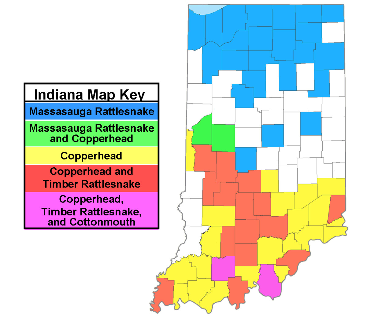 Distribution map of Indiana's front-fanged venomous snakes.  Created using information from the Indiana DNR.  Map template courtesy of www.nationalatlas.gov