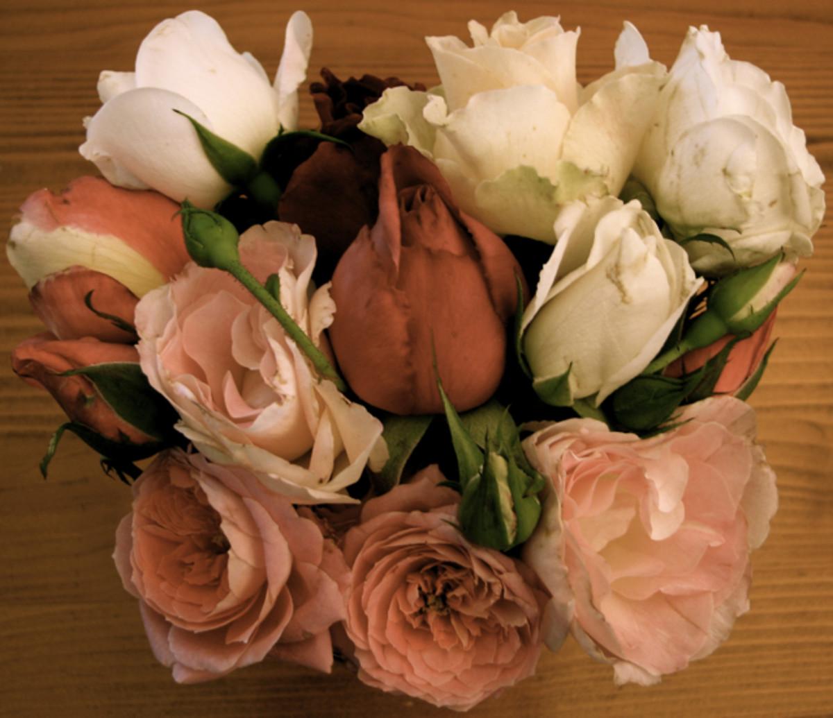 A rose bouquet from my grateful U3A computer students in Warragul.