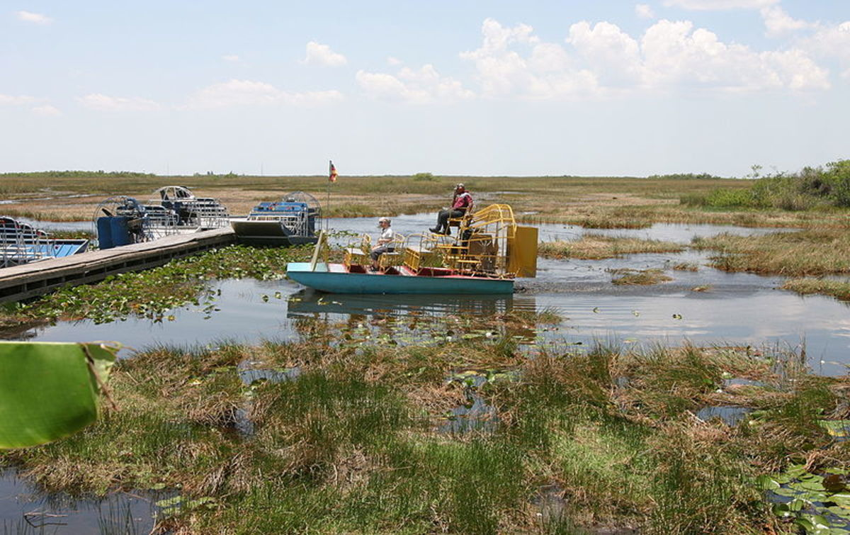 Airboats are a great way to see the birds of the Florida Everglades.  These boats give unique access to the River Of Grass.