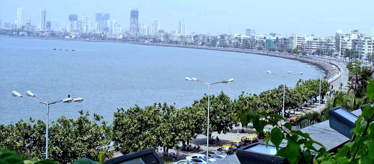 Barringtonia asiatica trees line Marine Drive along the Mumbai waterfront.