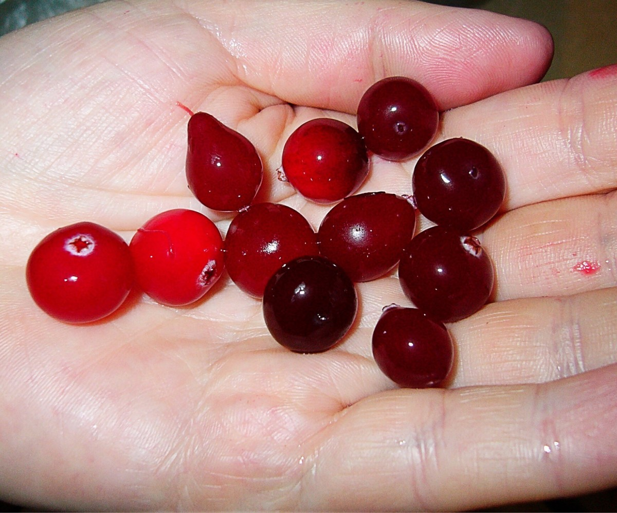 Cranberries are acidic. Their juice stimulates saliva flow.