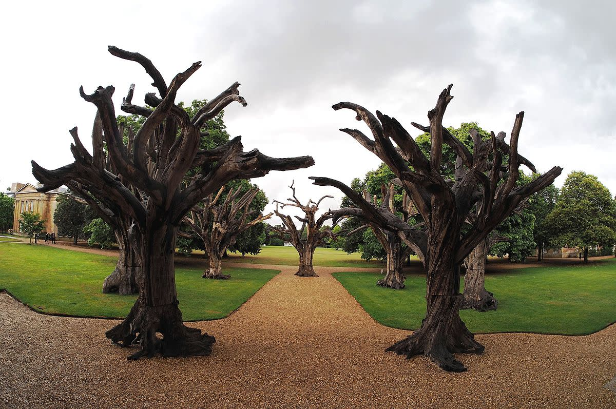 Trees by Ai Weiwei