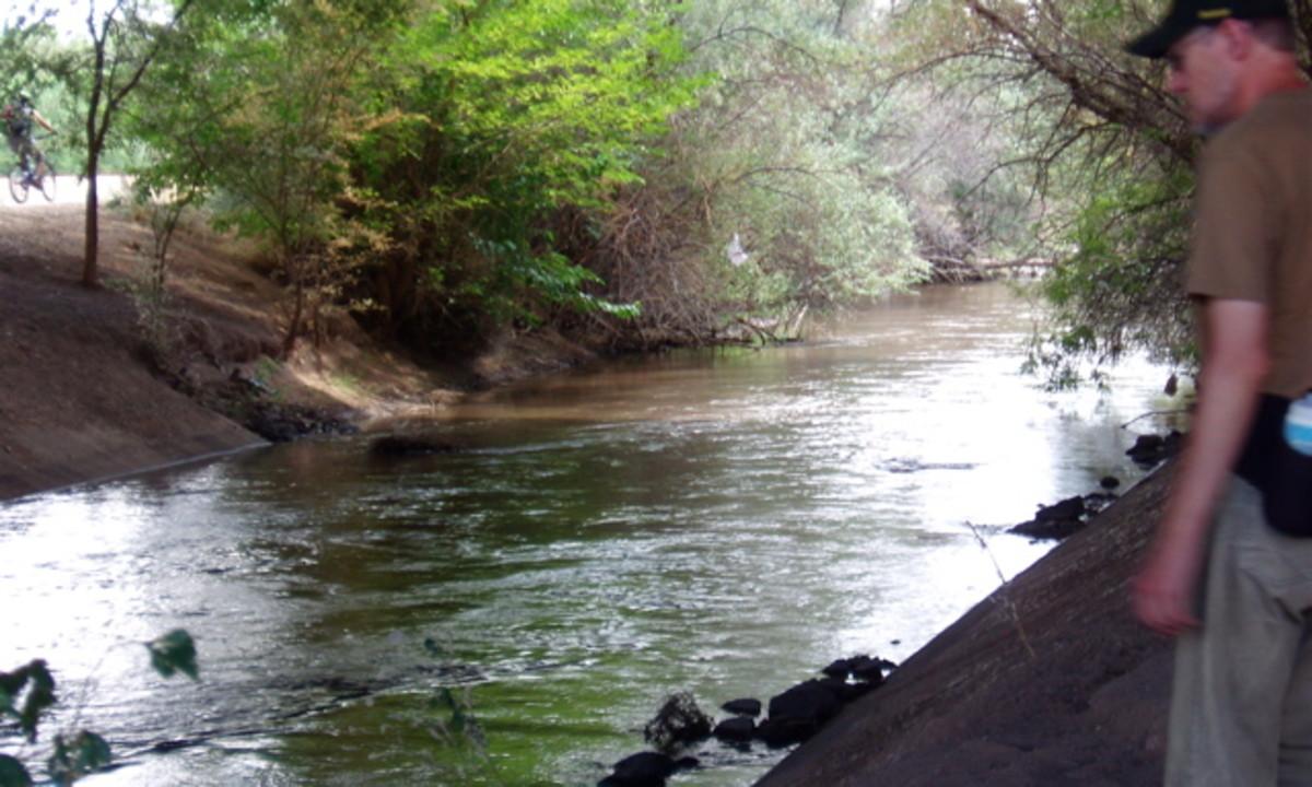 Rio Grande River running free through Albuqurque, NM.