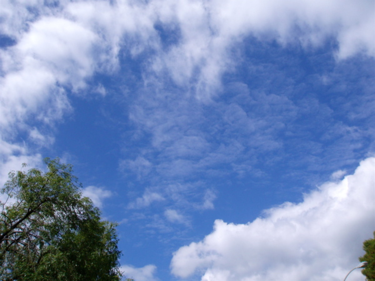 From evapotranspiration to condensation - water vapor condensing into clouds blown about by wind.