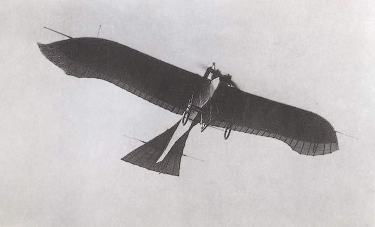 World War One: The Etrich Taube: German plane used as a fighter, bomber, trainer and and for surveillance.