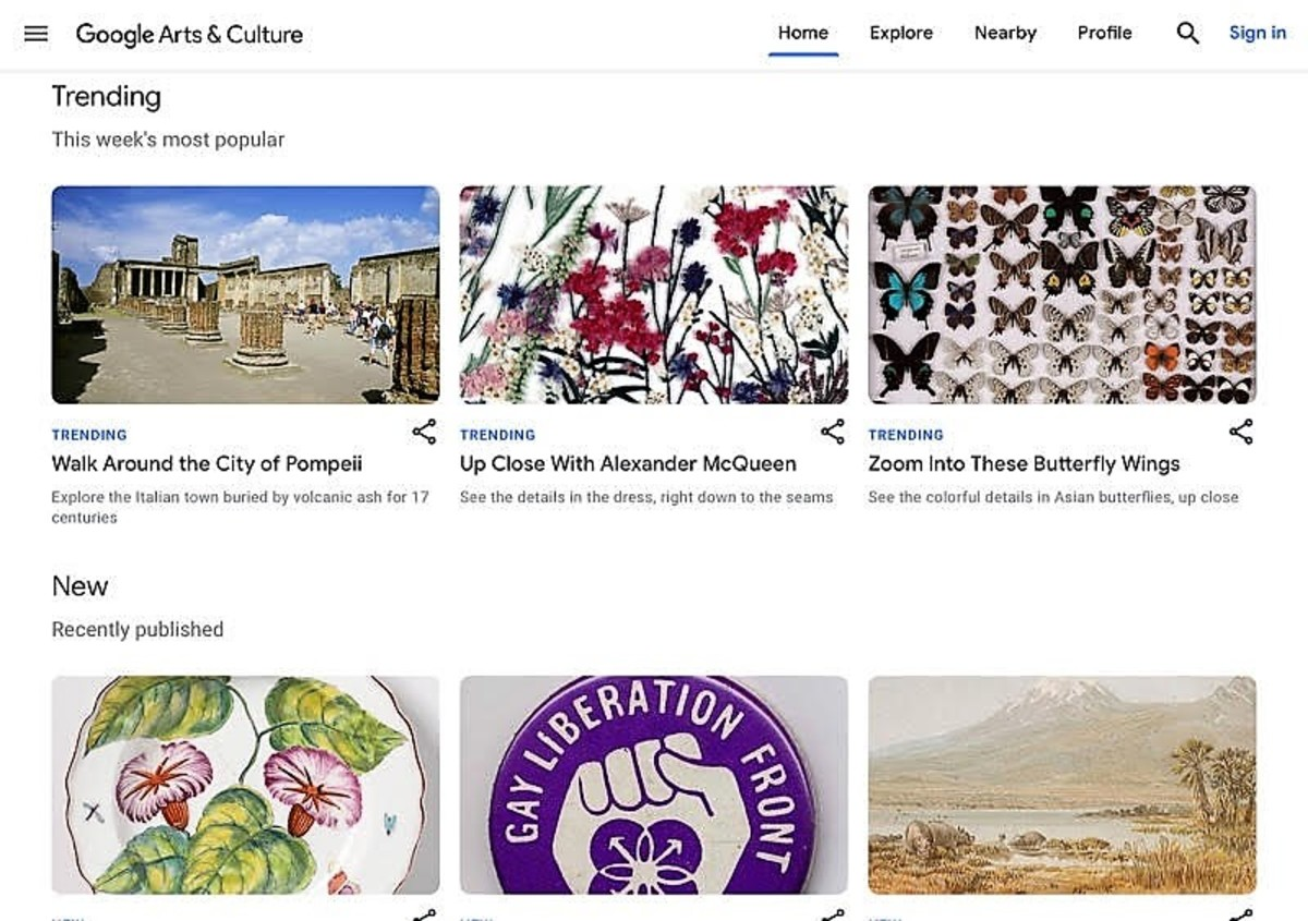 Screenshot from the Google Arts & Culture website