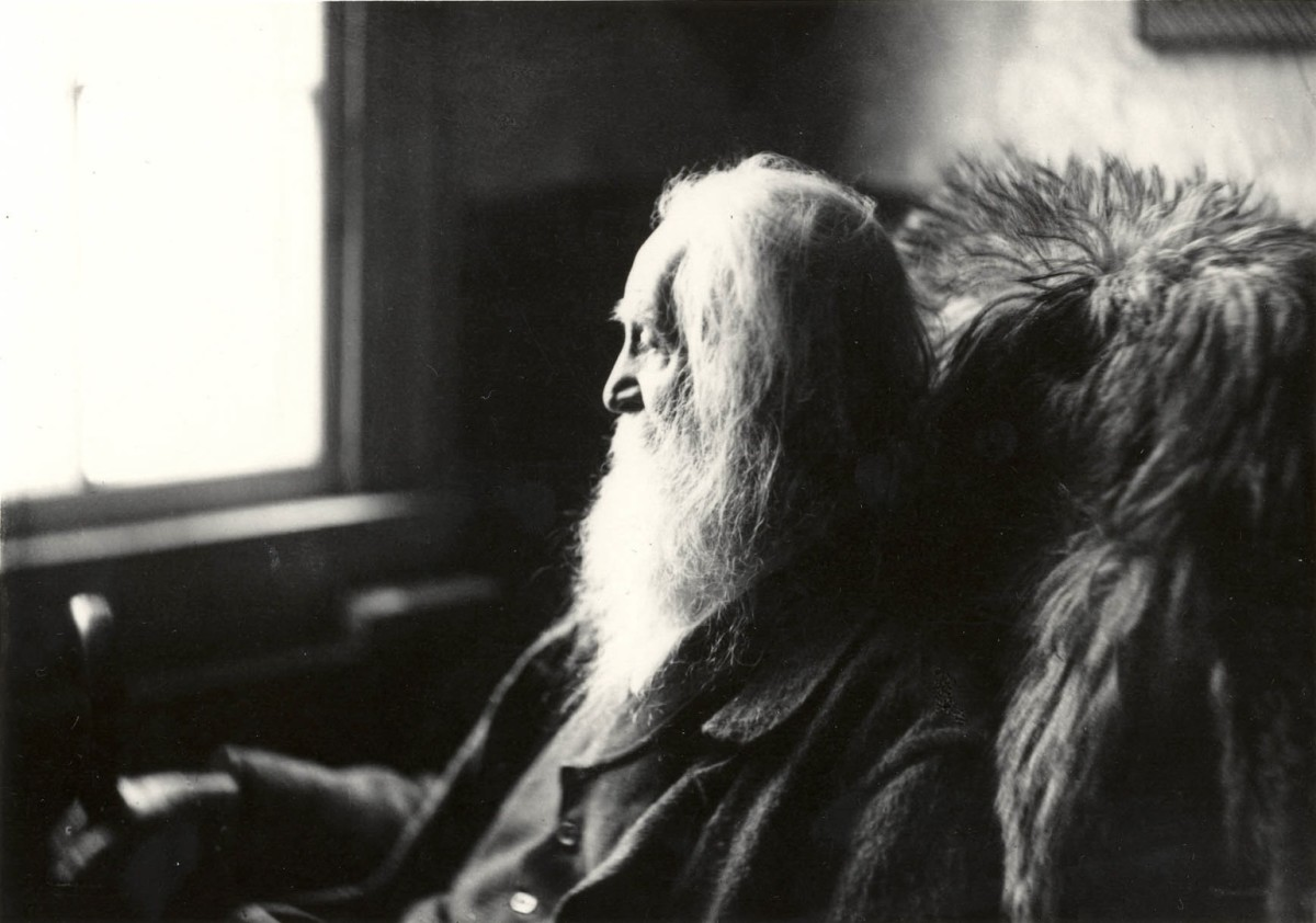 Walt Whitman is one of the most influential poets in American literature.