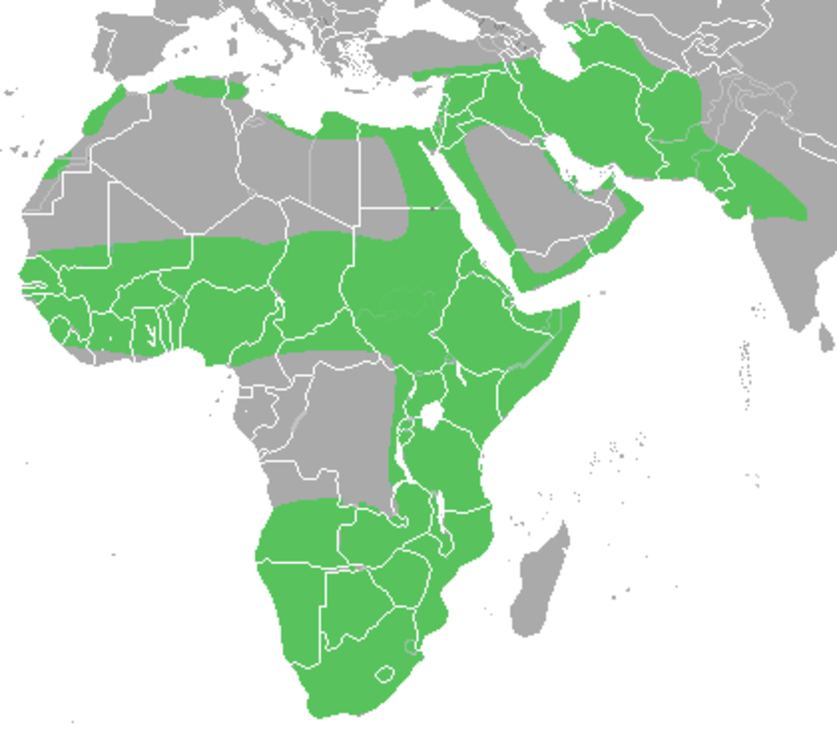 Distribution of the caracal.