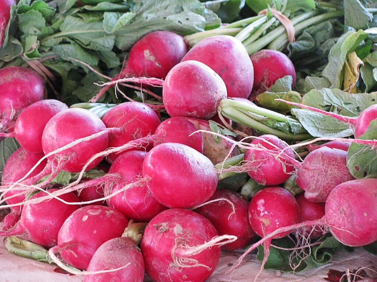 Radishes contain nitrates that the body uses to produce nitric oxide.