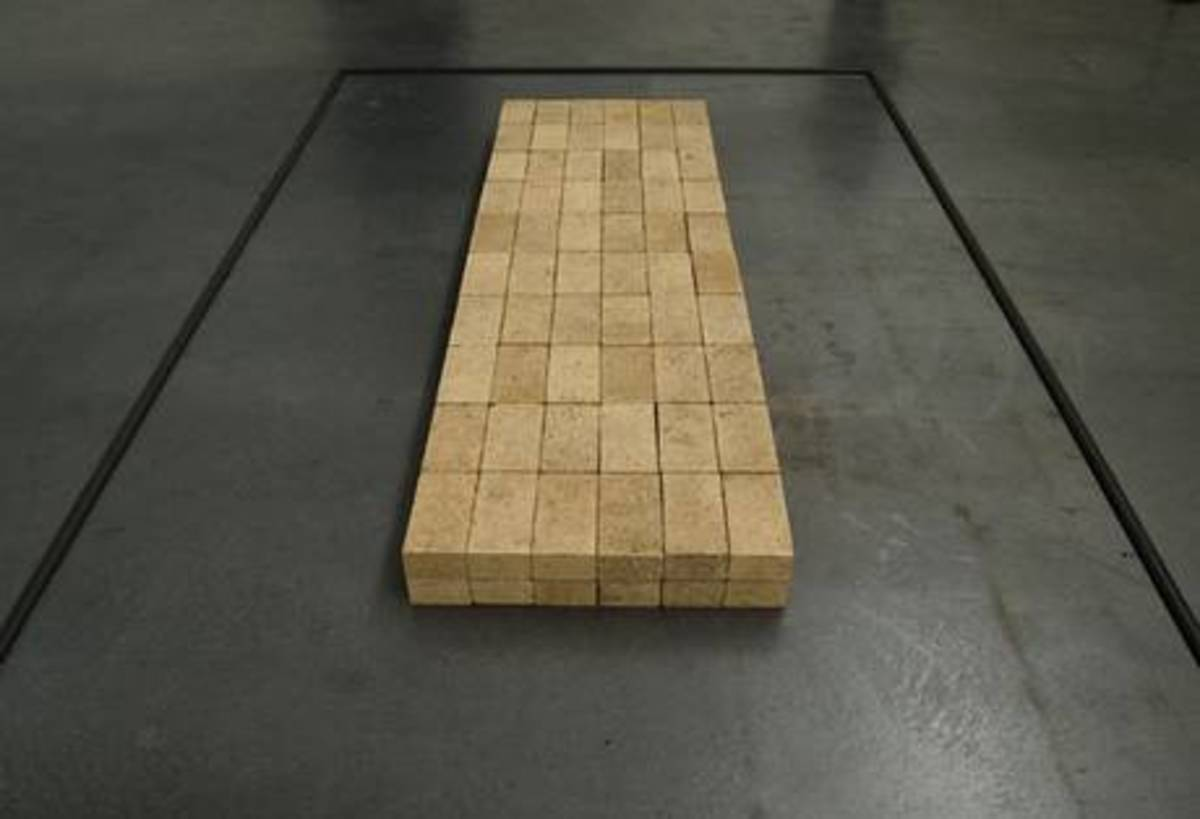 The bricks laid out in a neat rectangle