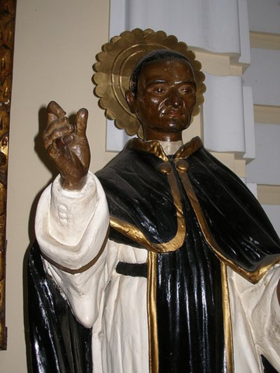 Saint Martin de Porres patron of mixed-race people.