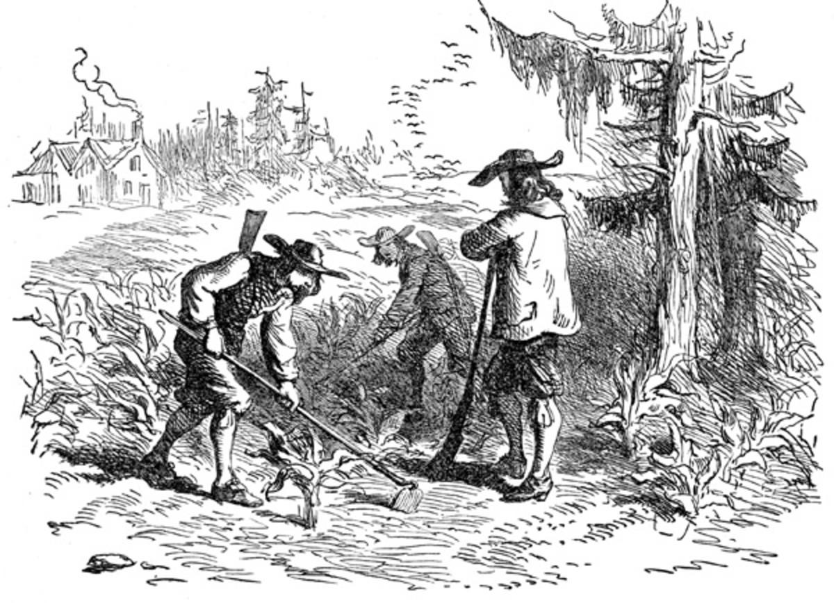 Rhode Island Colonial Charter Date